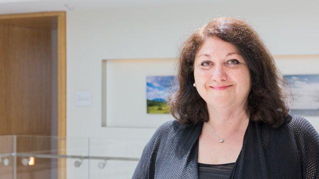 Irene, Program Manager