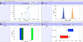 Data view showing mixture peaks at a locus.