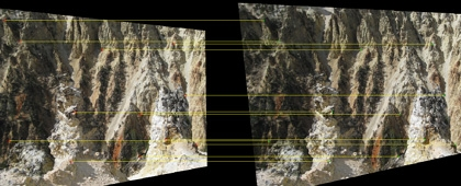 Rectified stereo image pair
