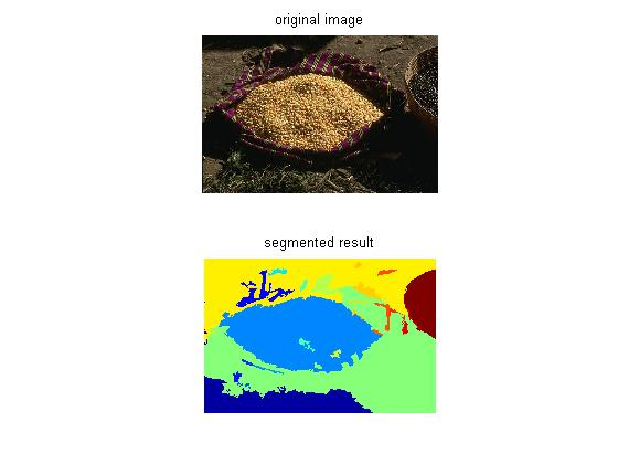 Patch-Based Segmentation with Spatial Consistency