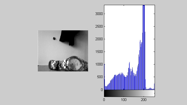Acquisition Toolbox used together with Image Processing Toolbox to display a video feed with a live histogram.