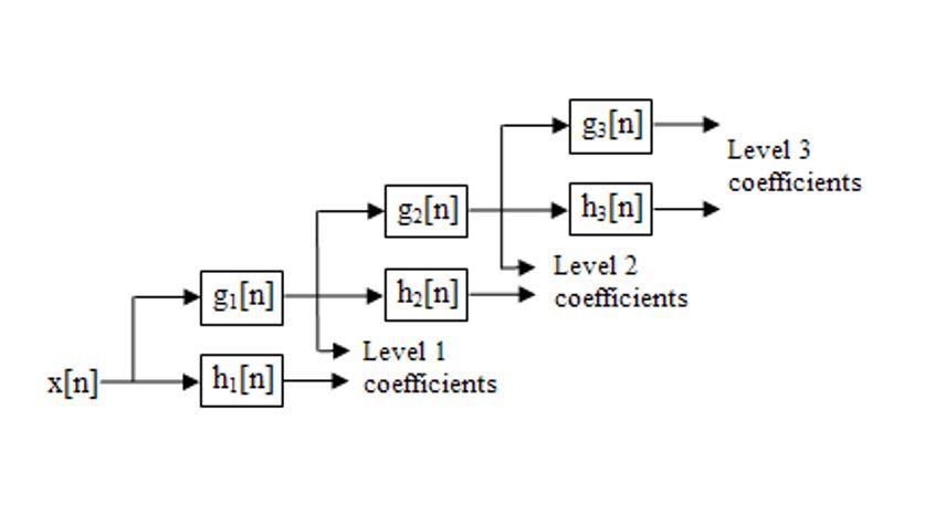Discrete wavelet filter banks.